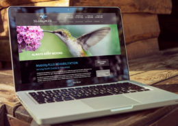 Nufire Marketing website portfolio, website design, Mobility Plus